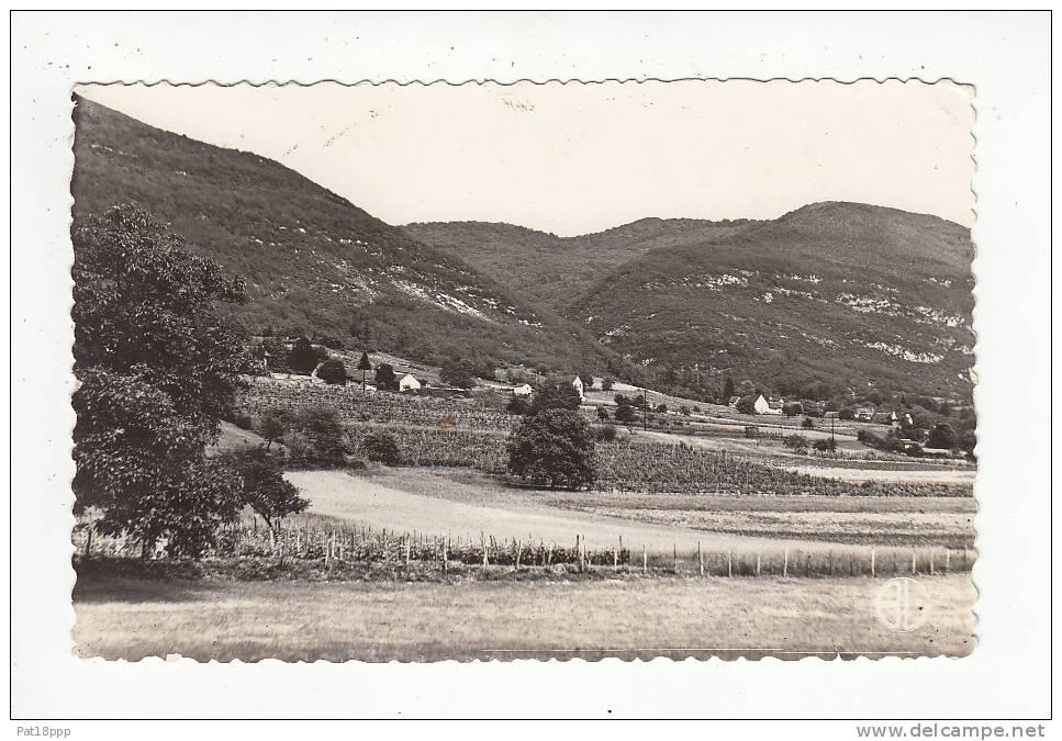 LHUIS (01) - CPSM Dentelée (1956) PF Peu Fréquente N° 4398 : Le Creux Du Nan(Ain) - France