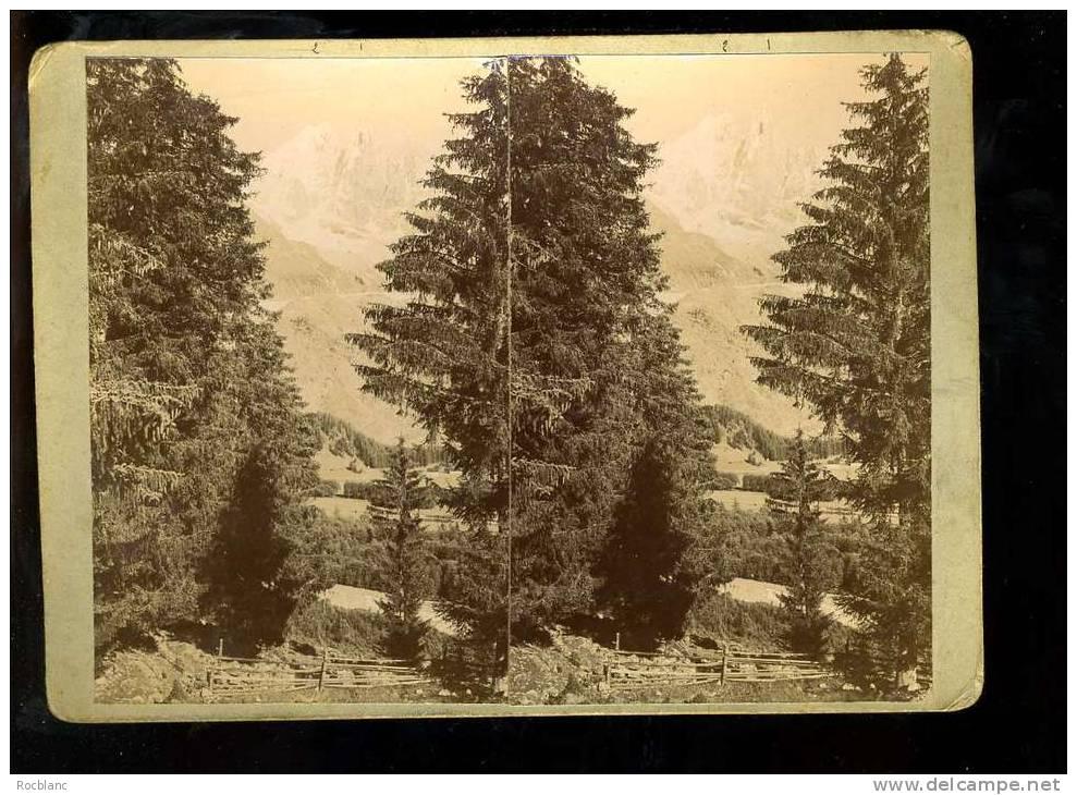 PHT4 HAUTE SAVOIE Photo Originale Datée  1903 Aiguille Du Dru, Aiguille Verte, Vue Des Praz - Photos Stéréoscopiques