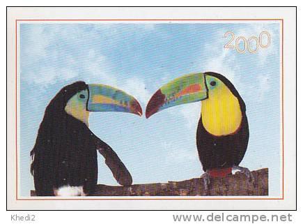 CALENDRIER 2000 - Oiseau Tropical TOUCAN - Calendar With TUCAN Bird - Kalender TUKAN Vogel - 05 - Calendriers