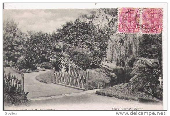 SYDNEY 48 BOTANIC GARDENS 1910 - Sydney