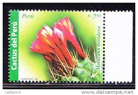 T)2008,PERU,CACTUS OF PERU,MNH,WITH BORDER SHEET - Peru