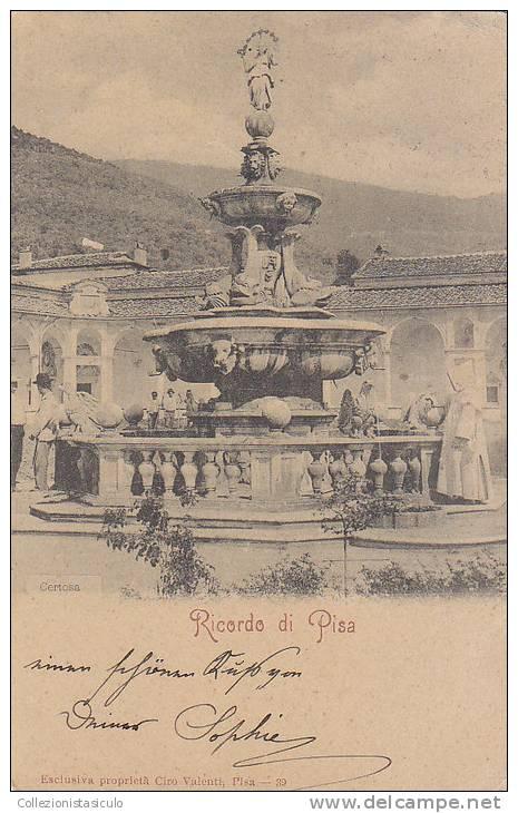 D302- Ricordo Di Pisa  - F.p. Viaggiata 1901 - Pisa
