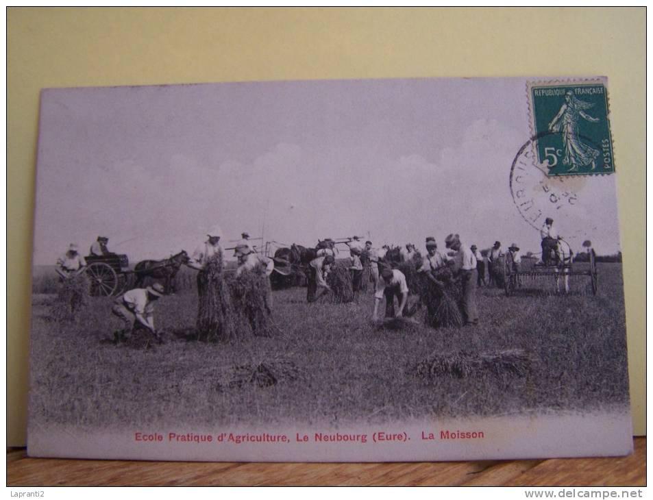 LE NEUBOURG (EURE) ECOLE PRATIQUE D'AGRICULTURE. LA MOISSON. - Le Neubourg
