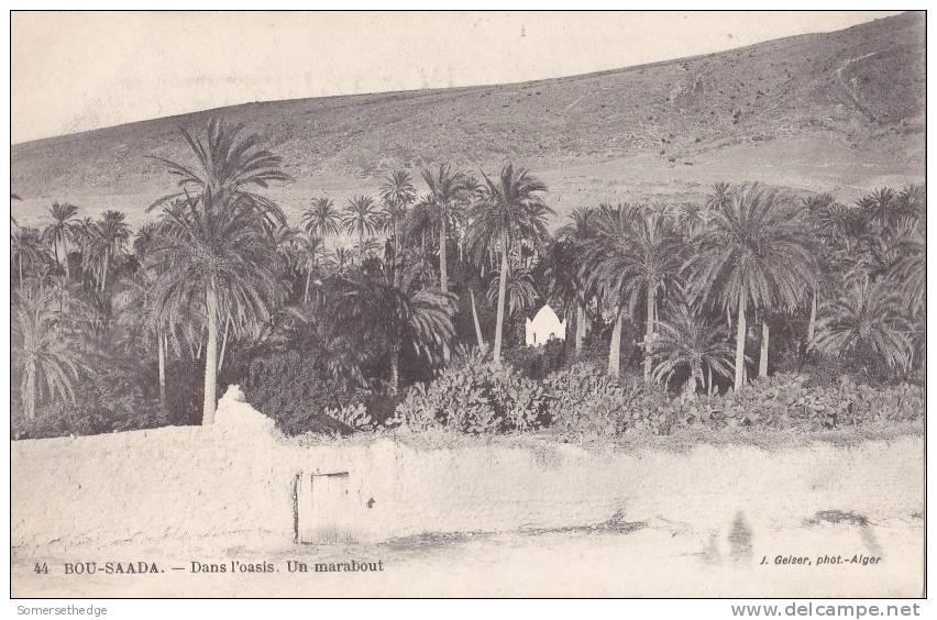 DANS POASIS UN MARABOUT BOU SAADA ALGIRIA (F4288) - Algérie