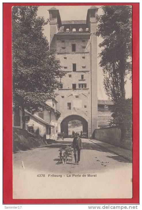 FRIBOURG, LA PORTE DE MORAT, ATTELAGE DE CHIEN, PHOTOTYPIE - FR Fribourg