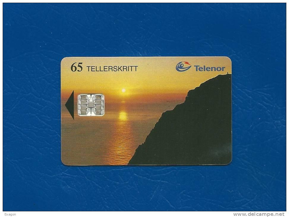 SCHEDA  Telefonica  TELENOR - 65 TELLER SKRITT-  NORDKAPP -  Emessa Nel 1995. - Irlanda