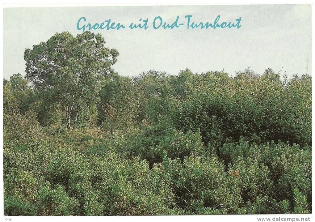 Oud Turnhout  Groeten Uit - Oud-Turnhout