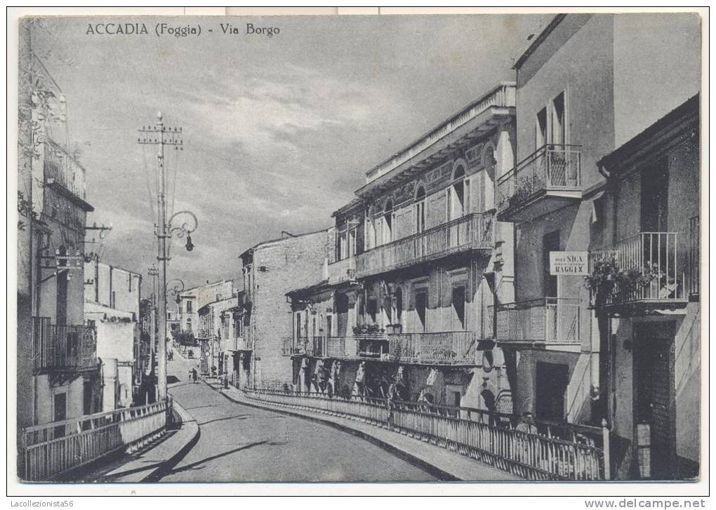 1182-ACCADIA(FOGGIA)-VIA BORGO-FG - Foggia