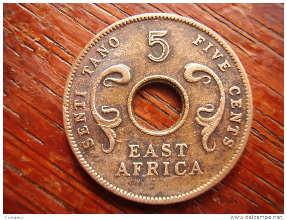 BRITISH EAST AFRICA USED FIVE CENT COIN BRONZE Of 1964 ´H´ - British Colony