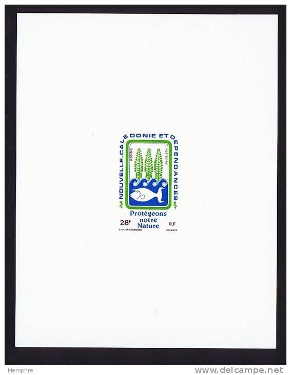 1981 Epreuve De Luxe Sur Bristol -- Protection De La Nature Y&T 452 - Non Dentelés, épreuves & Variétés