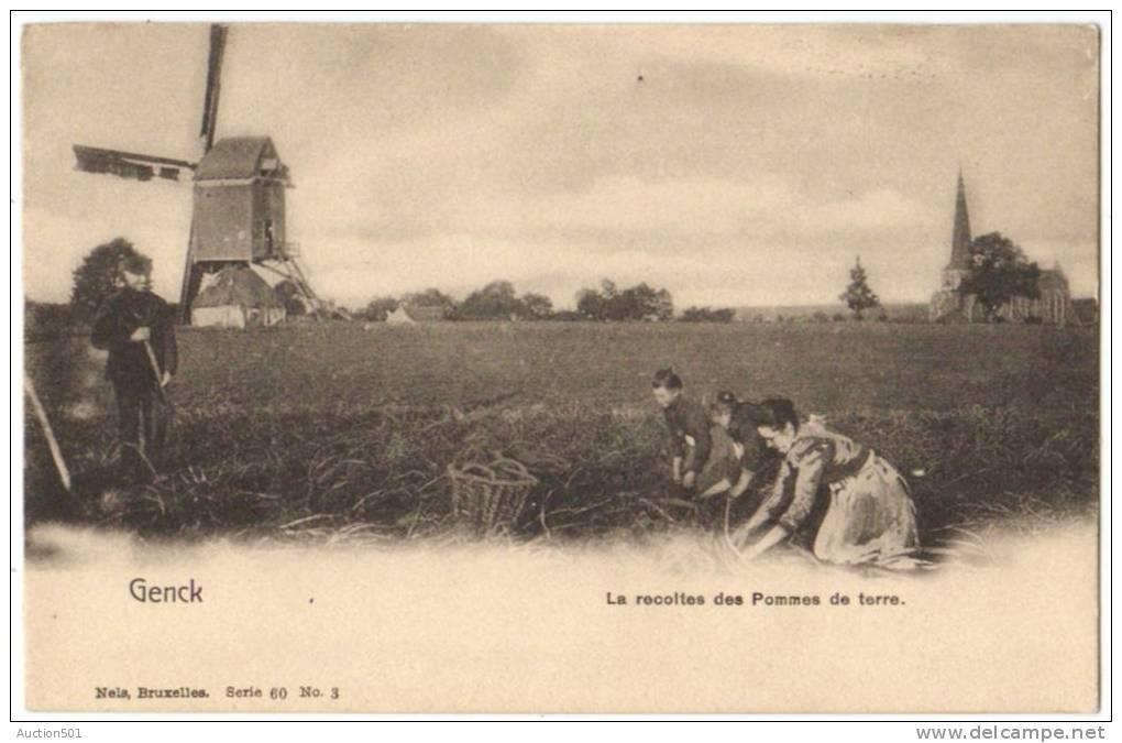 08786g CHAMPS De CULTURE - La Recoltes Des Pommes De Terre - Moulin - Genck - Genk