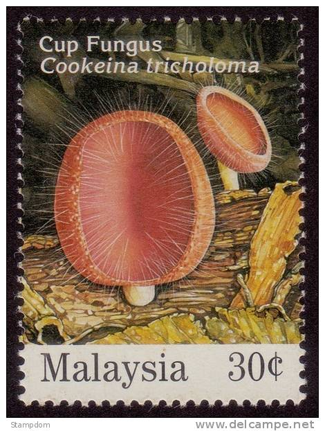 MALAYSIA Cup Fungus/Cookeima Tricholoma MNH [E1781] - Mushrooms
