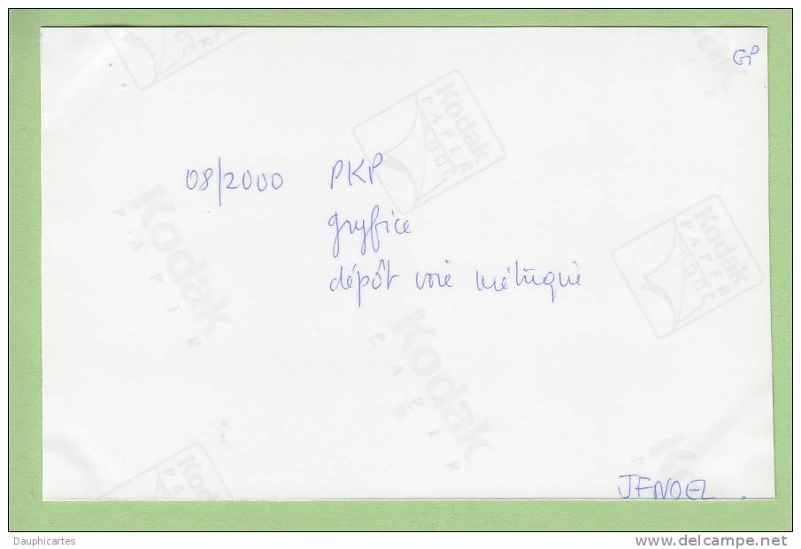 GRYFICE : PKP, Dépôt Voie Métrique. 2 Scans.  Photo Noël, Collection Pérève - Trains