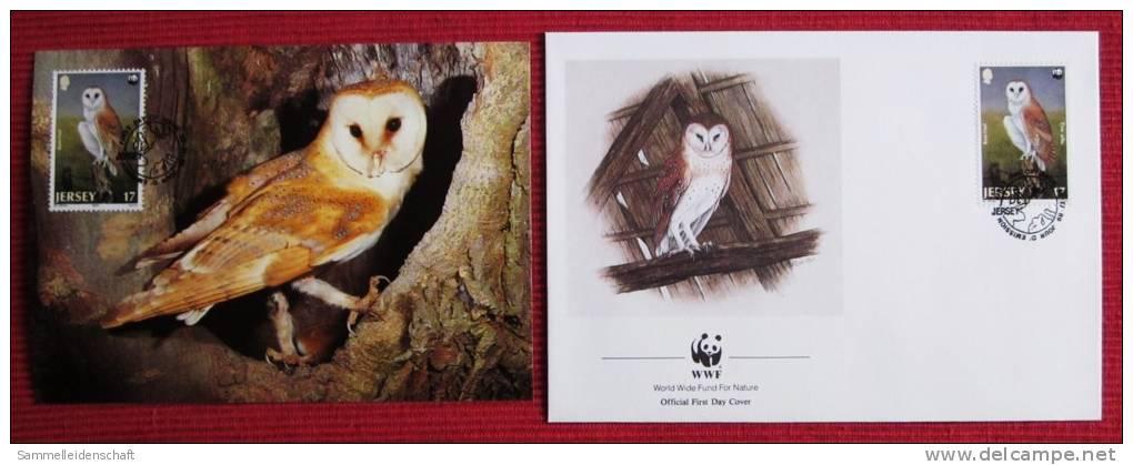 WWF Ansichtskarte Tiere Vogel Die Schleiereule Mit Briefumschlag 1989 - Vögel