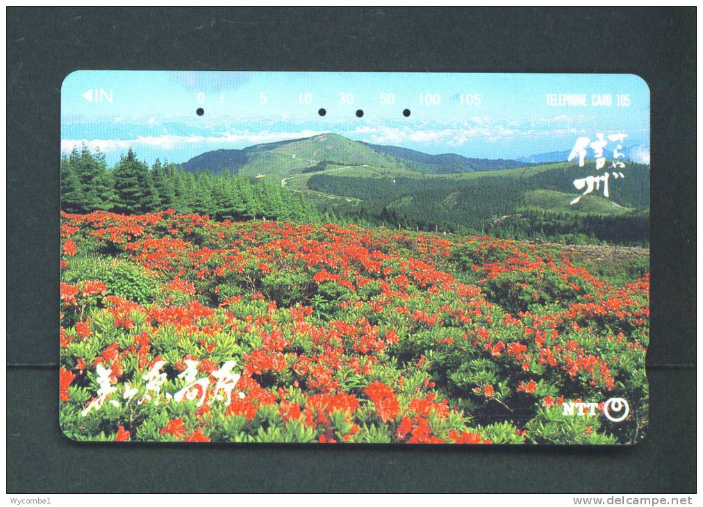 JAPAN  -  Magnetic Phonecard As Scan (271-111) - Japan