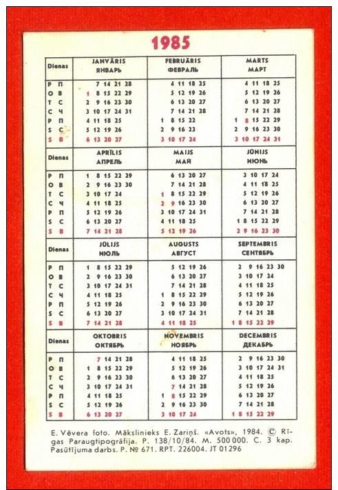 1985 Calendar Related Keywords & Suggestions - 1985 Calendar Long Tail ...