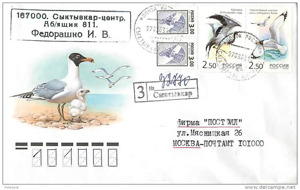 RUSSIA 2003. BIRDS - Marine Web-footed Birds