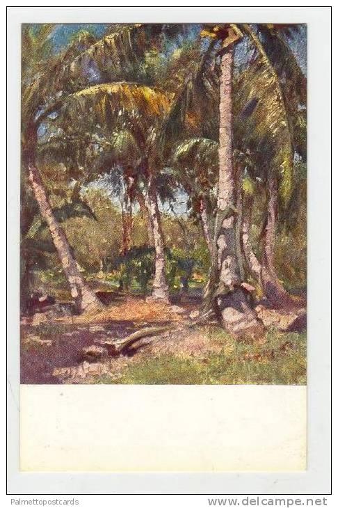 Nella Somalia Italiana, 1910-20s , Boschi di cocchi a Genale