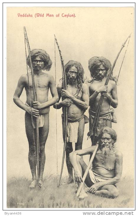 Sri Lanka - Ceylon - Veddhas - Wild Menof Ceylon  - édit; Plâté& Co. N° 145 -  PARFAIT ETAT (voir Scan) - Sri Lanka (Ceylon)