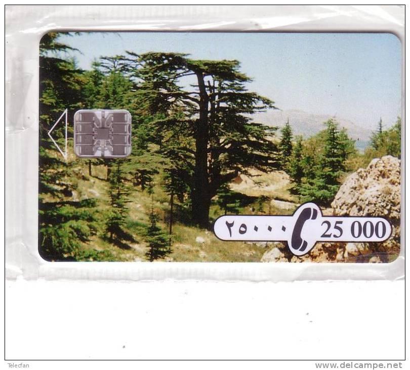 LIBAN LEBANON CEDRE CHIP CARD SC7 25000 LIVRES NEUVE MINT IN BLISTER RARE - Liban