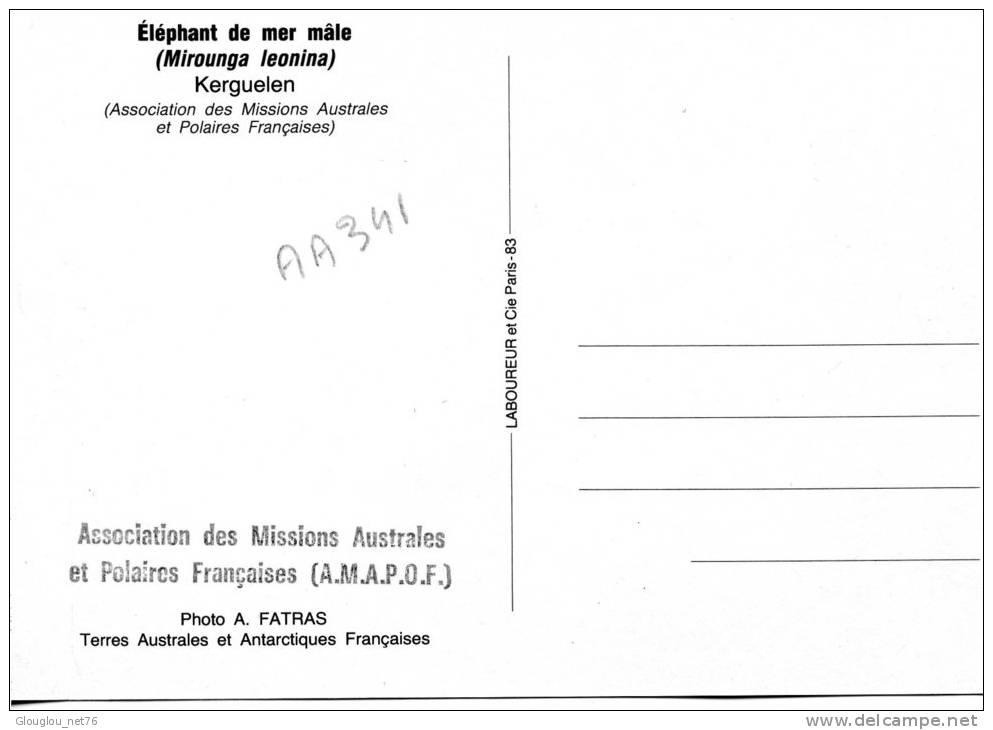 TAAF..KERGUELEN...ELEPHANT DE MER MALE....CPM - TAAF : Terres Australes Antarctiques Françaises