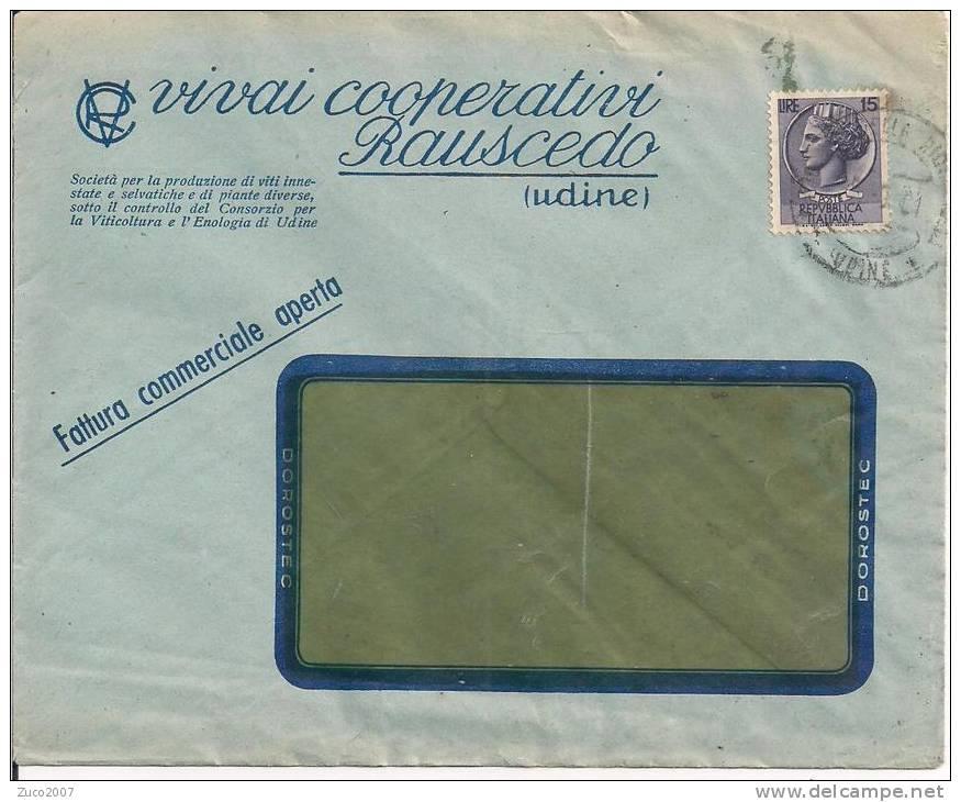 VIVAI COOPERATIVI RAUSCEDO, UDINE,  BUSTA FATTURA COMMERCIALE, VIAGGIATA 1961, - A. Piante Verdi