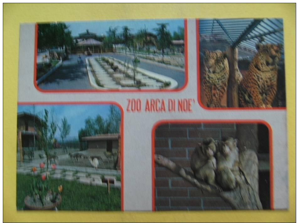 Montalenghe (TO) - Zoo Arca Di Noè - Non Viaggiata - Otras Ciudades