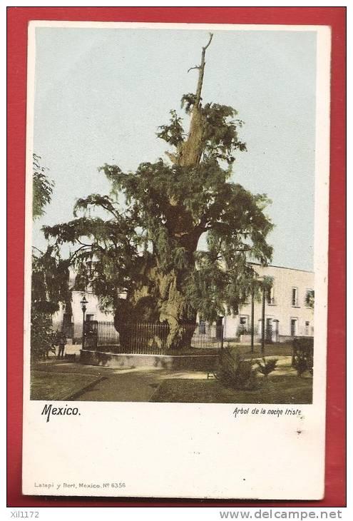 Q0299 Mexico  Arbol De La Noche Friste. Pioneer. Non Circulé. Traces D'agrafe (trous épingles). Latapi Y Bori 6356 - Mexiko