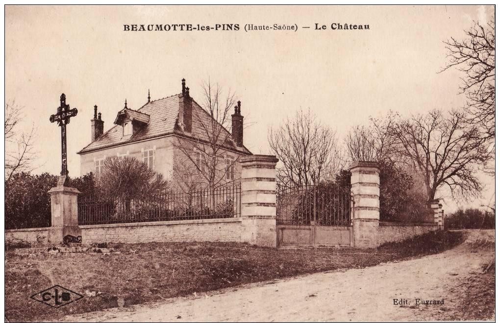BEAUMOTTE LES PINS.  LE CHATEAU. - France