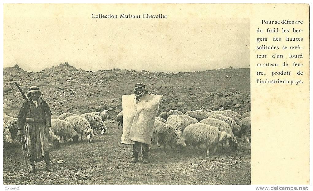 LIBAN BERGER METIER COLLECTION MULSANT CHEVALIER - Cartes Postales