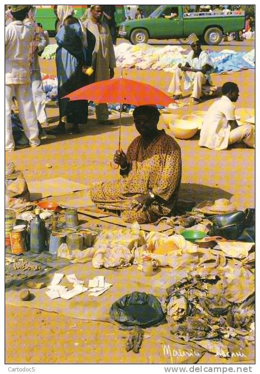 Petit Marché De Niamey  Pharmacopée Traditionnelle  Cpsm Format 10-15 - Niger