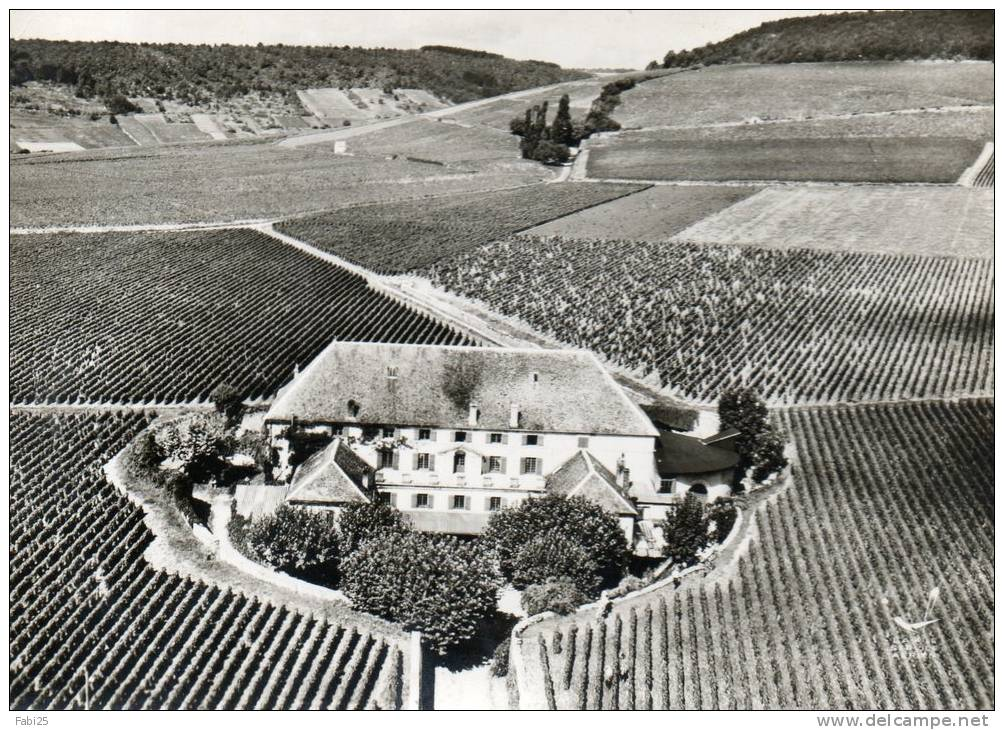 ALOXE CORTON La Cuverie Du Château Corton Grancey Propriété Louis Latour - Autres Communes