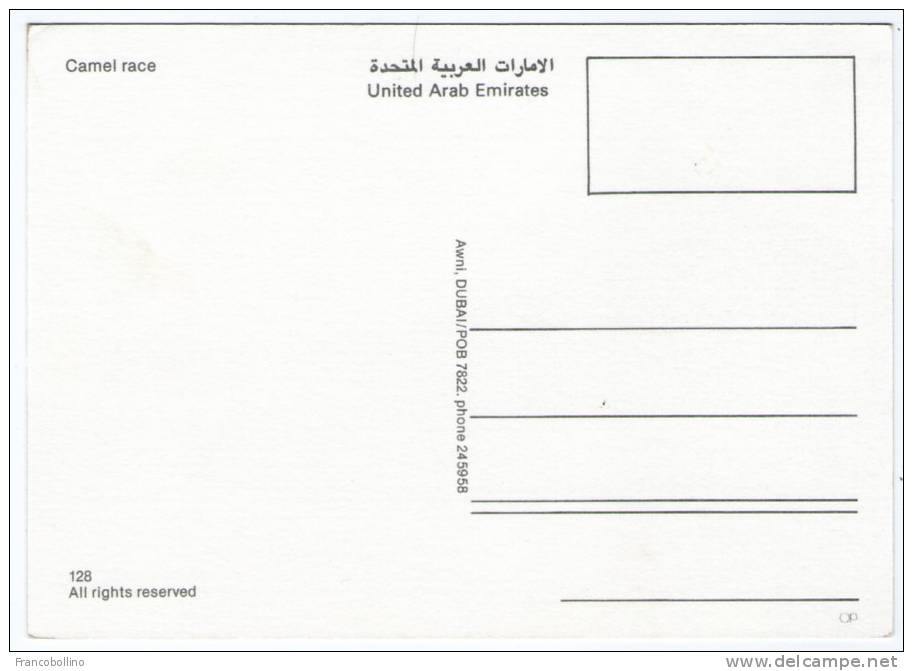 UNITED ARAB EMIRATES - CAMEL RACE - Emirati Arabi Uniti