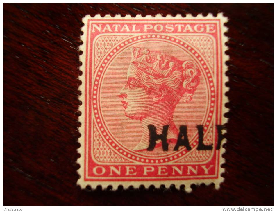 NATAL 1895  ONE PENNY OVERPRINTED HALF MINT HINGED Possibly Variety Very Fresh. - Sud Africa (...-1961)