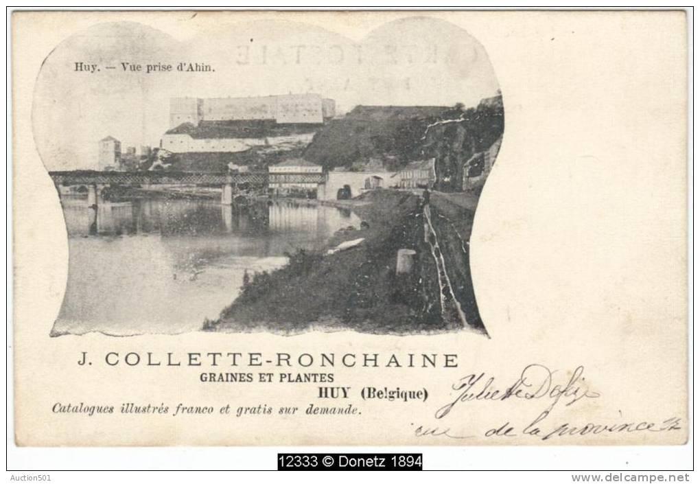 12333g HORTICULTURE - J. Collette-Ronchaine - Graines Et Plantes - Vue Prise De'Ahin - Huy - Huy