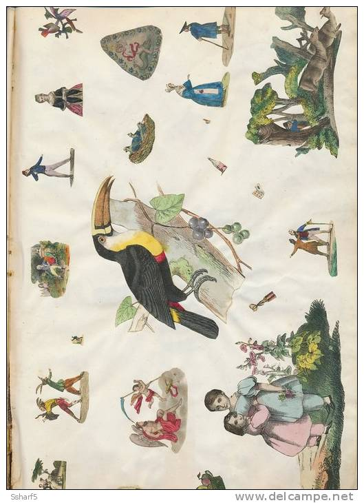 DUTCH PIONEER SCRAPBOOK Nederlands PLAKBOEK Uniek Unique 1842-1862 (34x22 Cm) 41 Scans! Top Quality - Must See - Oude Documenten