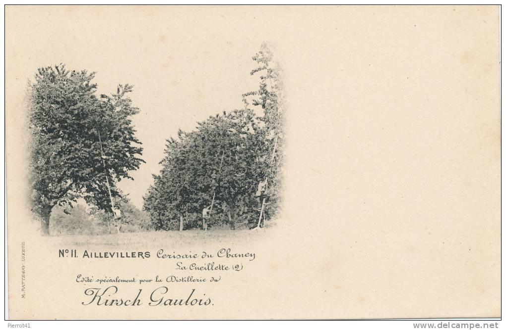 AILLEVILLERS - Cerisaie Du Chaney - La Cueillette - Carte éditée Par La Distillerie Du Kirsch Gaulois - Autres Communes