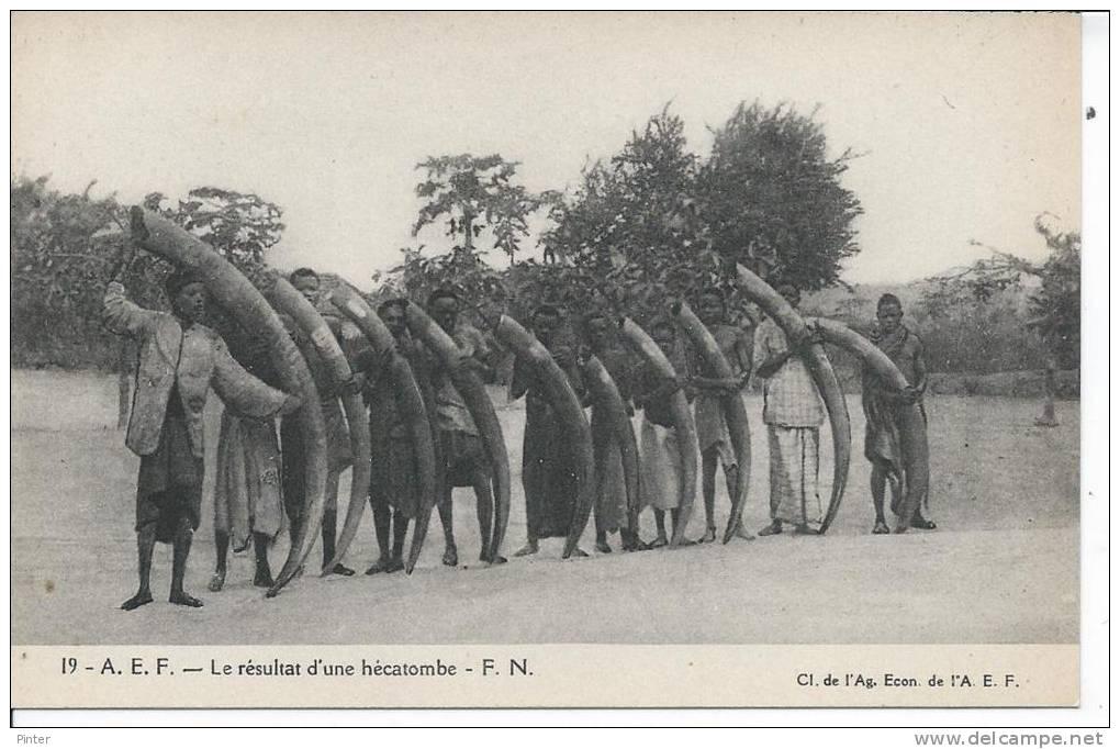 A.E.F. - Le Résultat D'une Hécatombe - Congo - Brazzaville