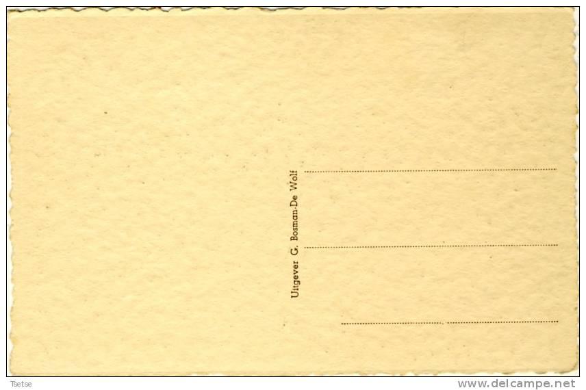 Lebbeke H. Kruis - Brusselsche Steenweg  ( Verso Zien ) - Lebbeke