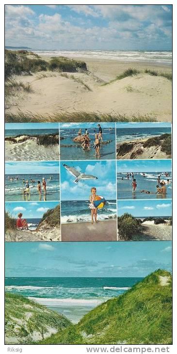 Die Nordsee - The North Sea. - Vesterhavet  # 891 - Postcards
