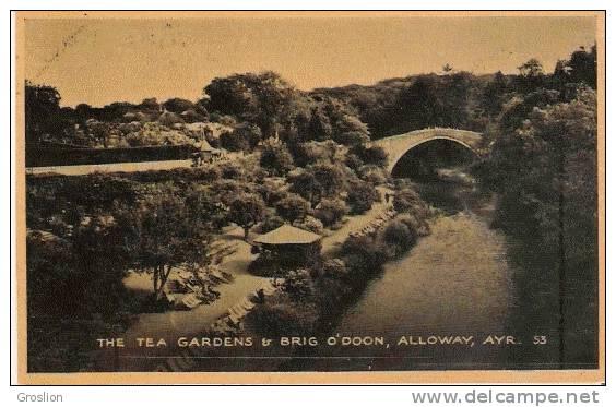 THE TEA GARDEN  BRIG O'DOON , ALLOWAY, AYR   53. - Ayrshire