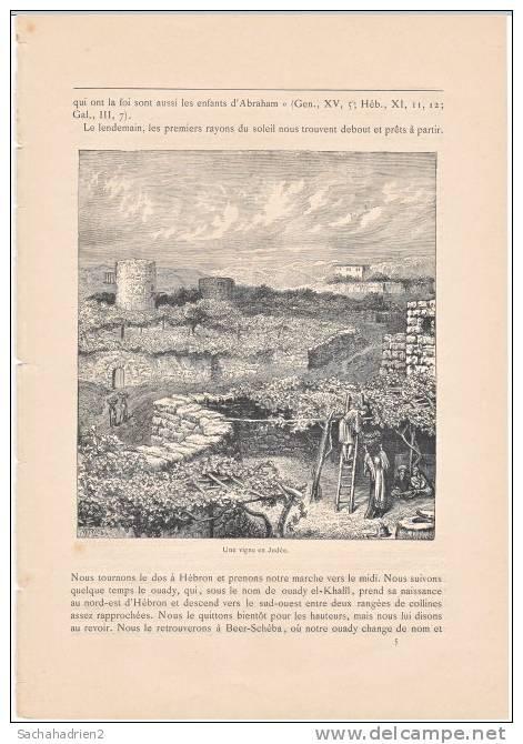 PALESTINE. Une Vigne En Judée. 1892 - Vieux Papiers