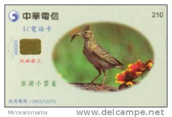 = TAIWAN - IC 02C016  =  MY COLLECTION - Taiwan (Formosa)