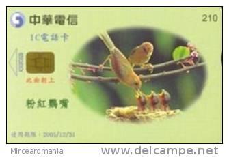 = TAIWAN - IC 02C029  =  MY COLLECTION - Taiwan (Formosa)
