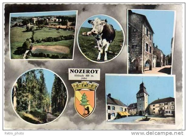 Nozeroy, Multivues (vache, Clocher, ...) - France