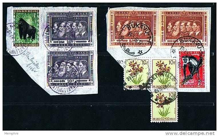 Usages Tardifs Sur Fragments : Les 5 Rois Belges, Fleurs, Animaux  1962 - Congo Belge