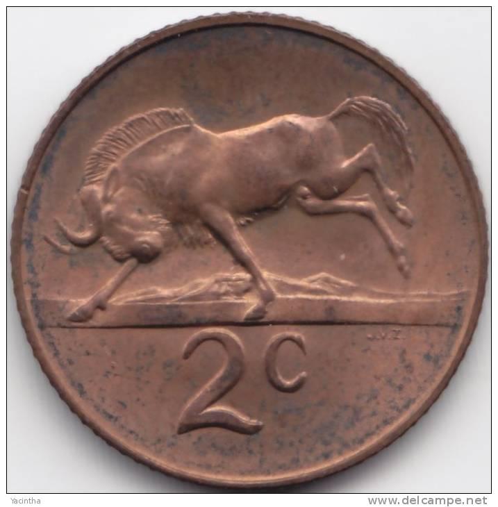 @Y@      Sud Afrika  2 C  1966  UNC (C298) - South Africa