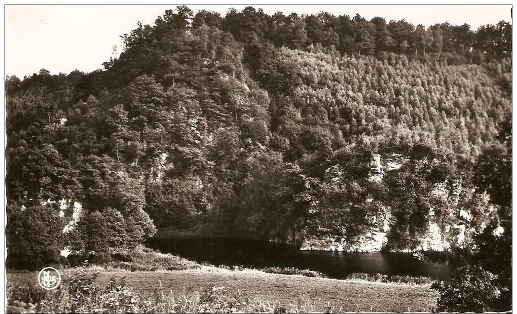 5216  VRESSE SUR SEMOIS DOHAN Rochers  De La Dampirée - Vresse-sur-Semois