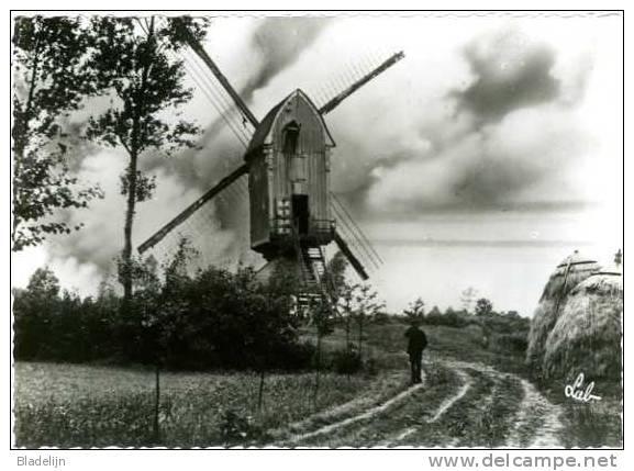 OLEN (Prov. Antwerpen) - Molen/moulin - De Verdwenen Hezewijkmolen (omvergetrokken In 1951) - Olen