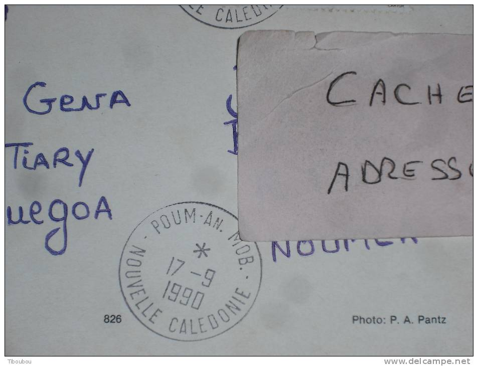 NOUVELLE CALEDONIE YT 590 SUR LETTRE CPM - CACHET ROND MANUEL POUM ANNEXE MOBILE - PAPILLON INSECTE - HIENGHENE LA POULE - Nouvelle-Calédonie
